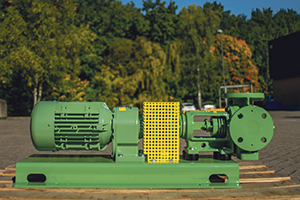 Victor R Series gear pump – for animal feed production